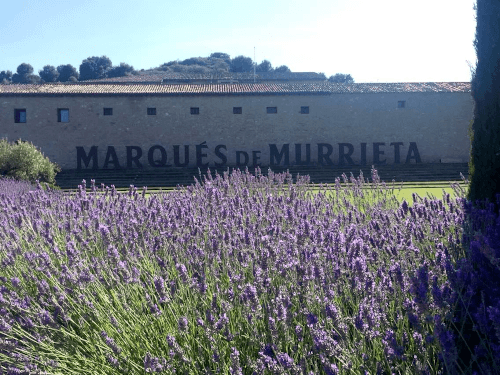 das spanische Weingut Marques de Murrieta