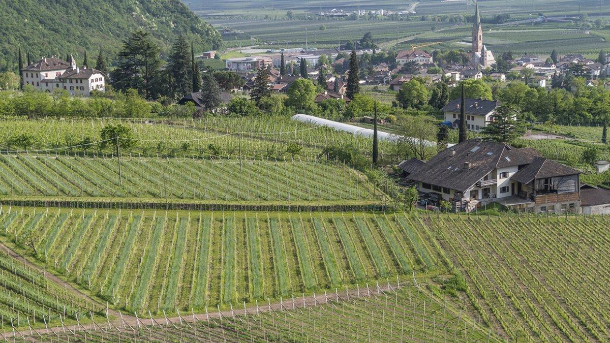 Terlan in Südtirol
