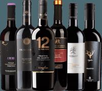 Preview: 6er Probierpaket - Primitivo aus Apulien