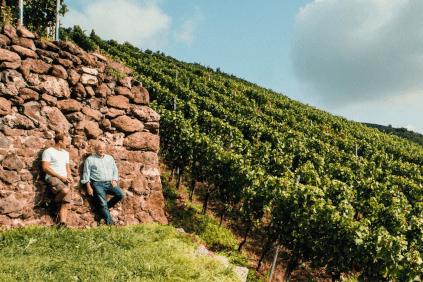 In the vineyard of Franz Keller