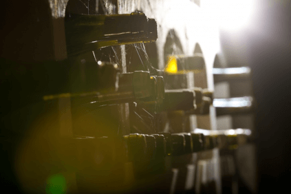 Bottles stored for a long time in the cellar