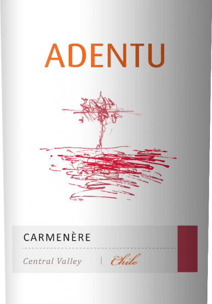 The AdentuCarménère by Vina Siegel shimmers in the glass in a rich cherry red. The bouquet delights with strong aromas of ripe plum with subtle floral and woody nuances. The palate is pampered by the concentrated fruit and fine tannins. This Chilean red wine is wonderfully soft and balanced. Vinification of the Vina SealAdentuCarménère After harvesting the grapes, the mash is fermented in a stainless steel tank. To give this red wine its fine woody notes, 5% of the AdentuCarménère is aged in American oak for 3 months. Food recommendation forthe AdentuCarménère Enjoy this dry red wine from Chile with vegetable sticks with creamy spicy dips, lamb roast in a herb coat with potato stew or with spicy cheeses - especially Gorgonzola.