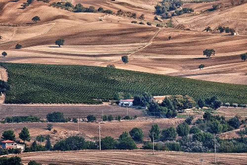 Das Weingut Vigneti del Vulture in der Region Basilikata