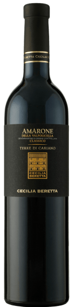 The Terre di Cariano Amarone della Valpolicella Classico DOC by Cecilia Beretta presents itself in the glass in a dark red with the luscious aromas of cherries, cassis, chocolate and noble spices. This red wine reveals itself on the palate warm and soft with ripe and silky tannins. A balanced amarone with a long reverberation. Vinification of Cecilia Beretta Terre di Cariano Amarone This cuvée is from the grape varieties Corvina, Rondinella, Corvinone, Croatina and Oseleta vinified. The grapes for this red wine are dried after harvesting. 30% of this Amarone matured for 24 months in large wooden barrels, the rest in barriques. Subsequently, the Terre di Cariano was refined for 12 months in the bottle. Food recommendation for the Cecilia Beretta Terre di Cariano Amarone Enjoy this medium dry red wine with hearty meat dishes such as lamb or wild boar. Awards for the Cecilia Beretta Terre di Cariano Amarone Luca Maroni: 90 points for 2011 I Vini di Veronelli: 92 points for 2011 Bibenda: 5 grapes for 2011 Mundus Vini: Gold for 2010 Wine Enthusiast: 90 points for 2010 Robert Parker: 91 points for 2009