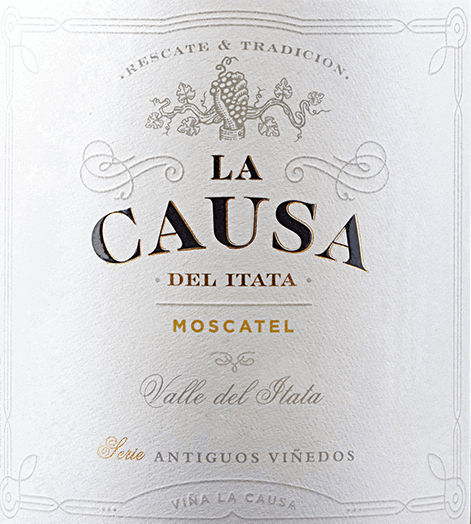 The Moscatel grape variety of La Causa has its home in the beautifulValle del Itata - located in the Chilean wine region Valle Sur. A bright straw yellow with golden highlights lies in the glass of this wine. The lush bouquet unfolds intense aromas of summer flowers, juicy ripened citrus fruits - especially lime and grapefruit - as well as grapes. The racial acidity refreshes the palate and is harmoniously integrated into the crisp body. The fermentation on the berry peels gives this Chilean white wine a wonderful structure and the storage on the fine yeast a silky fullness. The finale comes with a pleasant length. Vinification of La Causa Moscatel In April, the optimally matured Moscatel grapes are harvested in Valle del Itata and initially strictly selected in the wine cellar. The material to be harvested is then gently squeezed and fermented for 7 days at a temperature of 16 to 18 degrees in a stainless steel tank. This wine then remains on the berry peels for 5 days. Finally, this white wine is aged in the steel tanks for 12 months on the fine yeast. Food recommendation for the Moscatel La Causa Enjoy this dry white wine from Chile well chilled as a welcome aperitif. Or hand this wine over to finger food, grilled chicken or even fish and seafood.
