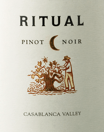 The Ritual Pinot Noir of Veramonte is an excellent, grape varietal red wine from the Chilean wine region Valle de Casablanca. A shimmering ruby red with dark red highlights illuminates this wine in the glass. The intense bouquet is carried by sweetly ripened red fruits - raspberries, strawberries and cranberries reveal themselves. Finely mineral hints and spicy nuances of the oak maturity accompany this. The texture on the palate is wonderfully velvety soft with a juicy, red berry fruit fullness. The living acid is perfectly integrated into the middle body. The long, balanced finale offers a wonderful balance of gently integrated alcohol and tannin. Vinification of the Pinot Noir Veramonte Ritual Only in the morning the Pinot Noir grapes are carefully picked by hand. Arriving in the wine cellar of Veramonte, the harvested goods are selected twice. A small part of this Chilean red wine is fermented in open fermenters. The floating pomace (pigeage) is immersed by hand. The other part is first ground and fermented in stainless steel tanks. After completion of the fermentation process, this wine rests for 11 months in French oak barrels. Food recommendation for the Ritual Veramonte Pinot Noir Enjoy this dry red wine from Chile Braised beef or lamb, taijne - with meat, poultry or vegetarian - or with pasta in spicy sauces.
