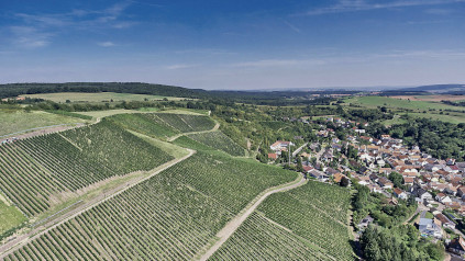 The VDP Große Lage offer ideal conditions for first-class Riesling