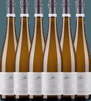 6er Vorteils-Weinpaket - Blanc de Noirs eins zu eins 2019 - A. Diehl