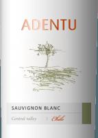 Preview: Adentu Sauvignon Blanc 2019 - Viña Siegel