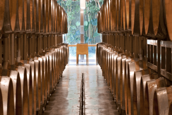 Cusumano Weinkeller Barricaia