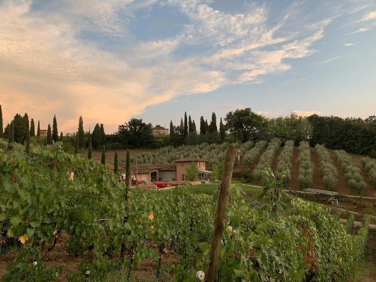 Poggiotondo - im Herzen der Toskana