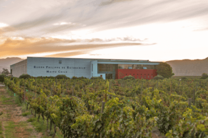 The modern winery