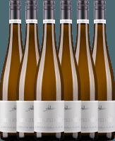 6er Vorteils-Weinpaket - Grauer Burgunder eins zu eins Kabinett 2019 - A. Diehl