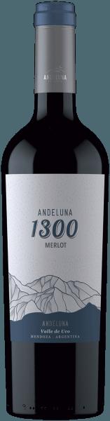 Merlot 1300 Tupungato Mendoza 2017 - Andeluna Cellars