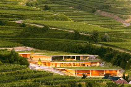 Winery of Franz Keller