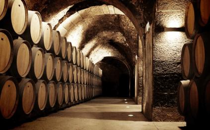 The historic cellar of Casa Primicia