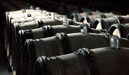 Im Weinkeller von William Fevre