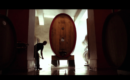 Modern cellar work and wooden barrels set the tone in the cellar.
