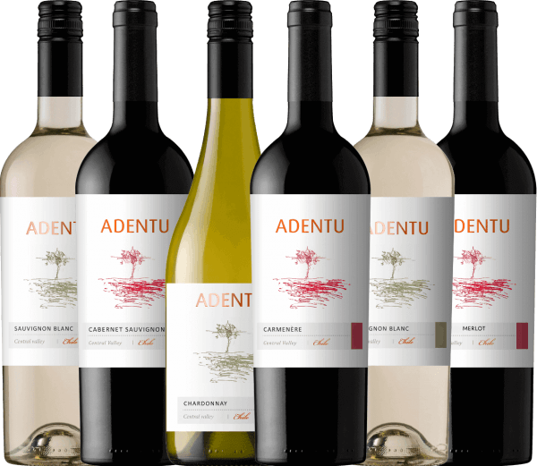 It is the philosophy of Viña Siegel that the wines radiate their very own identity, reflect the Chilean country and are always of outstanding quality. Also in the team of this winery are the pillars of commitment, respect, responsibility and perseverance. Both aspects combine perfectly in the Adentu wine line. The Adentu wines are wonderfully harmonious and balanced - they have their very own, varietal personality. Enjoy the Chilean Adentu wines from Viña Siegel with this 6-piece introductory package. The introductory package of Adentu wines fromViña Siegel includes: 2 bottles: Adentu Sauvignon Blanc (dry - 13.3 vol. %) 1 bottle: Adentu Chardonnay (dry - 13.4% vol.) 1 bottle: Adentu Cabernet Sauvignon (dry - 13.2% vol.) 1 bottle: Adentu Carménère (dry - 13,2 vol. %) 1 bottle: Adentu Merlot (dry - 13.4 vol. %)