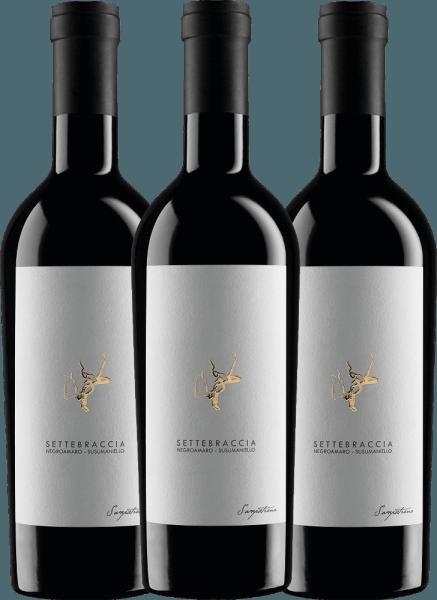 3er Vorteils-Weinpaket - Settebraccia Rosso 2017 - Cantina Sampietrana