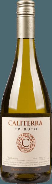 Tributo Chardonnay Casablanca Valley DO 2018 – Caliterra